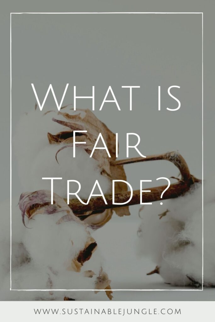 There's a lot to unpack when it comes to fair trade—both good and not-so-good. So... what is fair trade? Photo by Marianne Krohn on Unsplash #whatisfairtrade #sustainablejungle