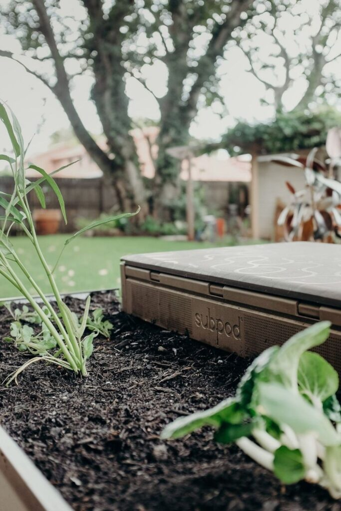 Future generations deserve to enjoy all that we have, so let's talk about some of the best zero waste products. Image by Subpod #zerowasteproducts #sustainablejungle