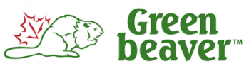 Green-beaver-Sustainable-Jungle